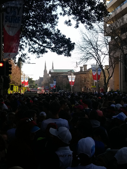 City2Surf 2015: Blue start